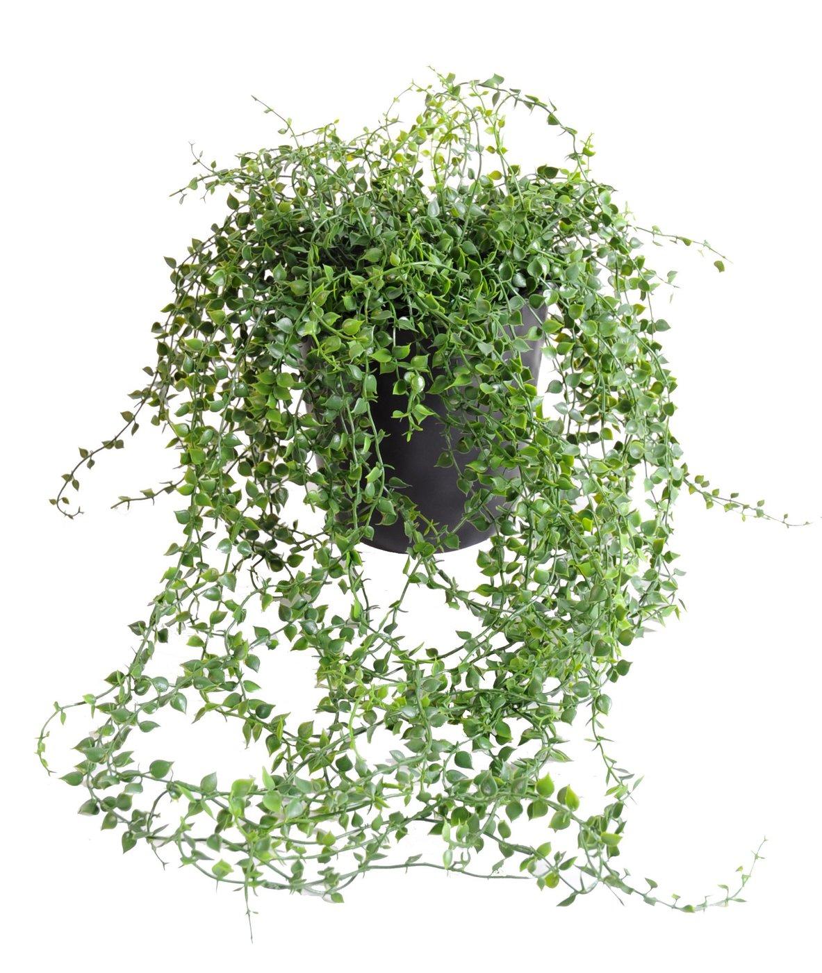 Golosinas verde plantas artificiales ingarden - Plantas artificiales ...