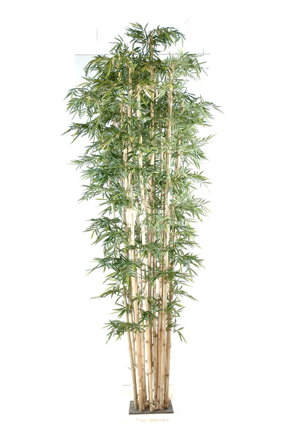 Bambus plantas artificiais ingarden - Bambu planta exterior ...